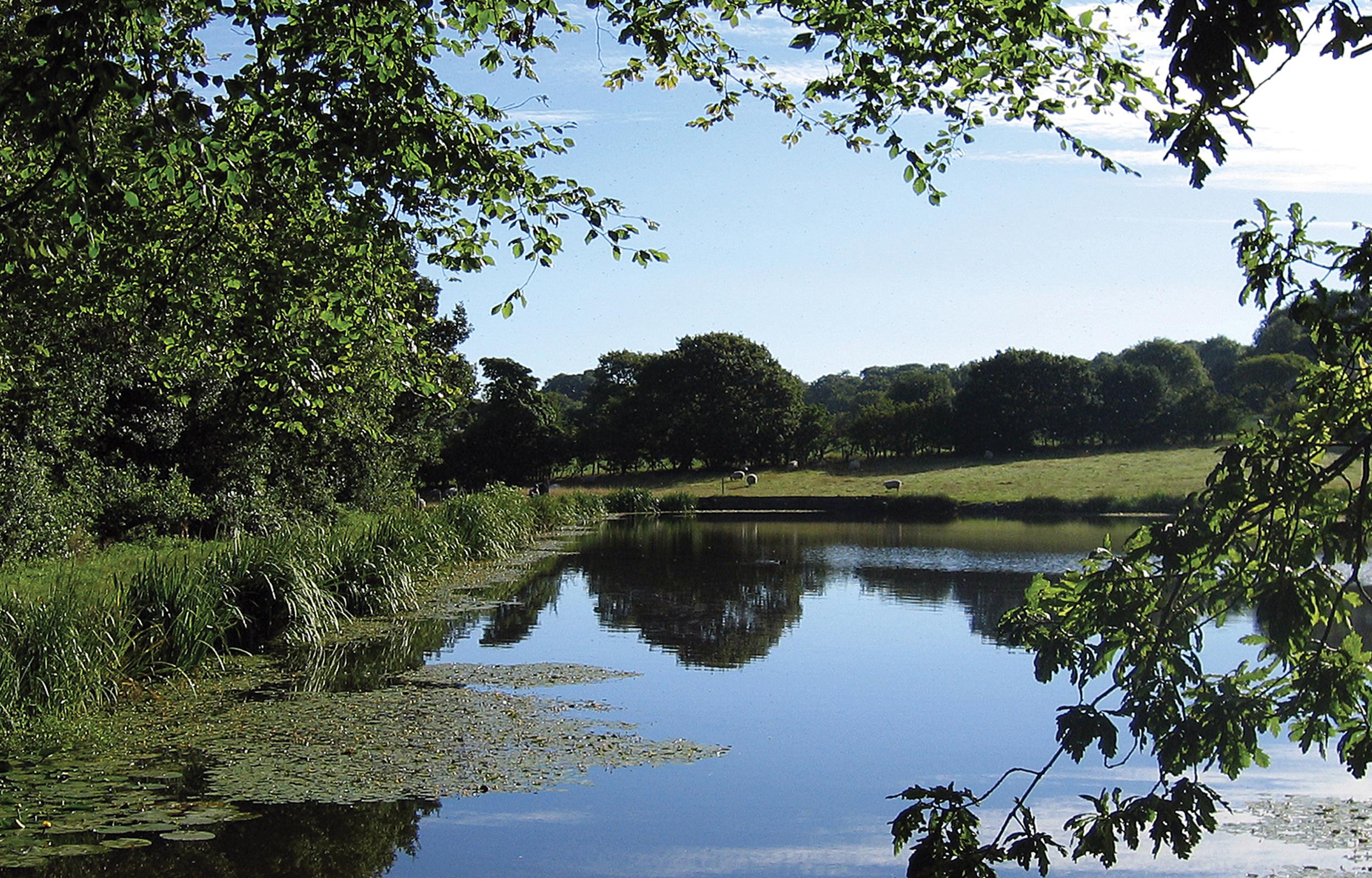 Oak Vale_A Sense of Place_Carousel_4